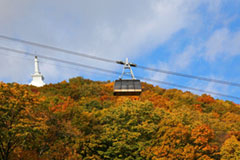 The tinted autumnal leaves and the ropeway